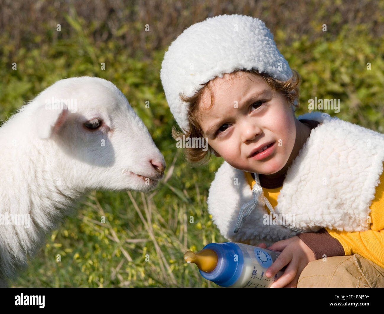 Young boy feeding lamb Stock Photo