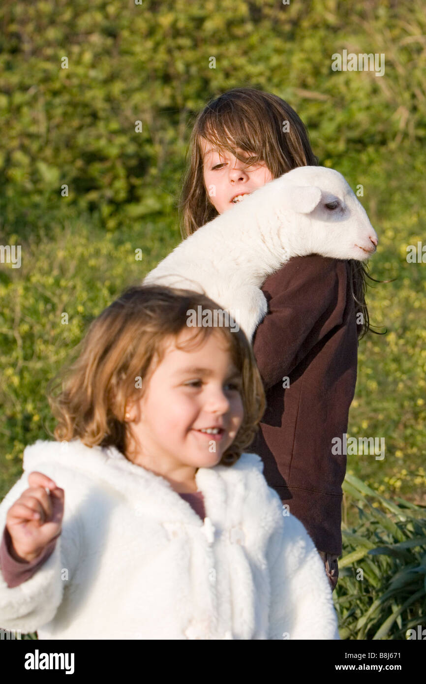 children playing with a sheep Stock Photo