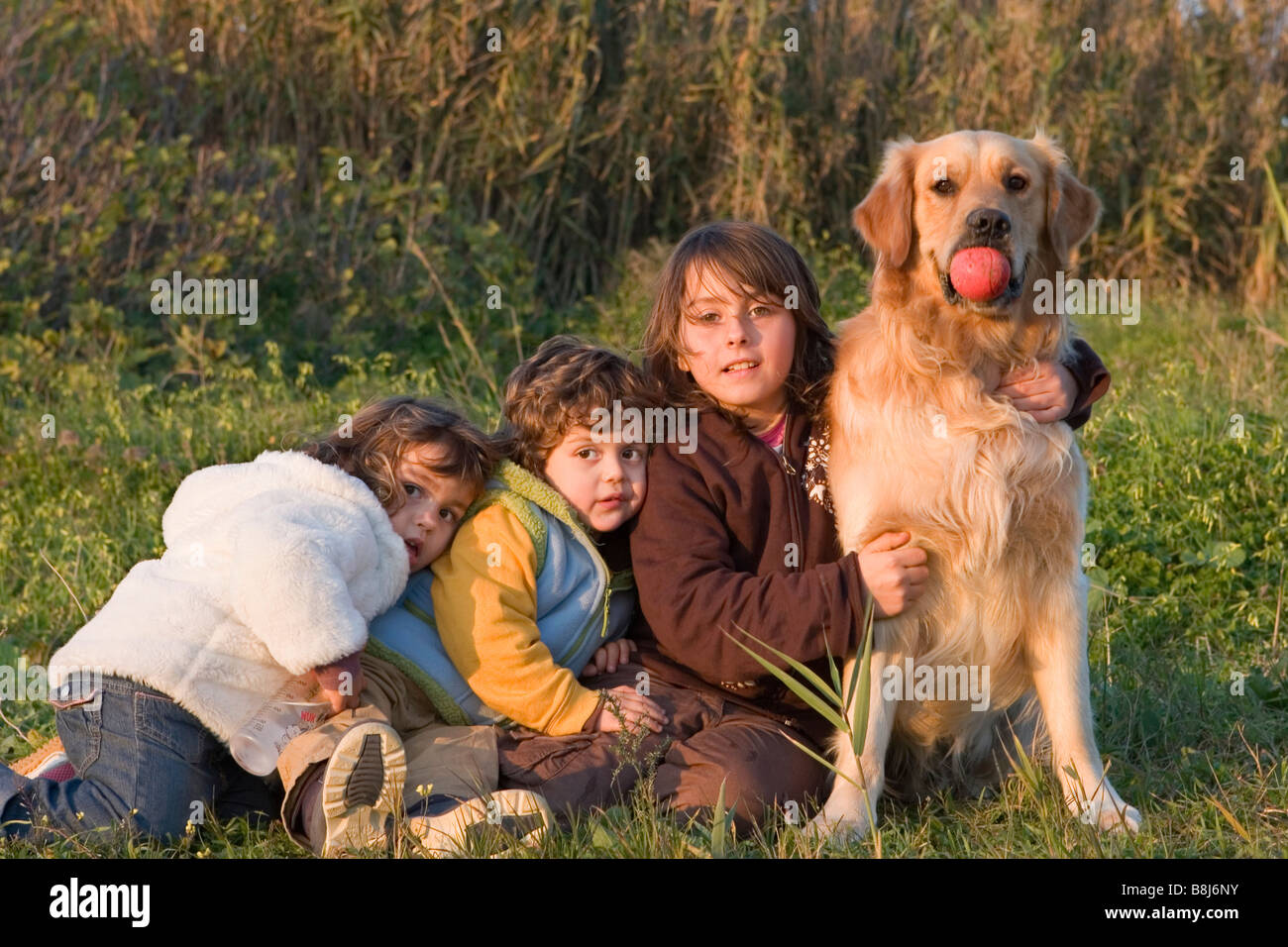 children playing with a dog Stock Photo