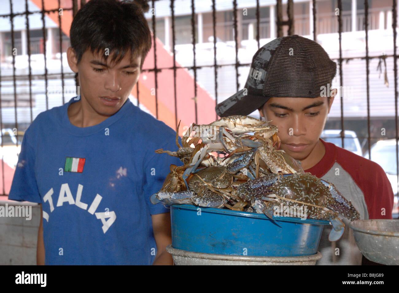 Two boys weighing a bowl of crabs interior of SAFMA fish market Kota Kinabalu Sabah Malyasia Borneo South east Asia - Stock Image