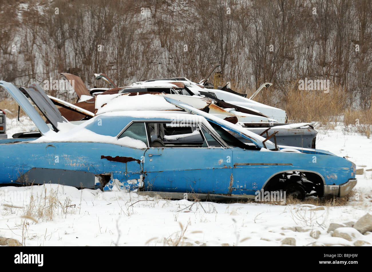 Old cars in a snow covered junk yard Stock Photo: 22536609 - Alamy