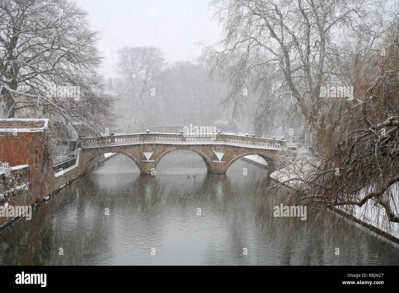 'Clare College Bridge' Cambridge University while it was snowing, river cam and trees covered in snow. English - Stock Image