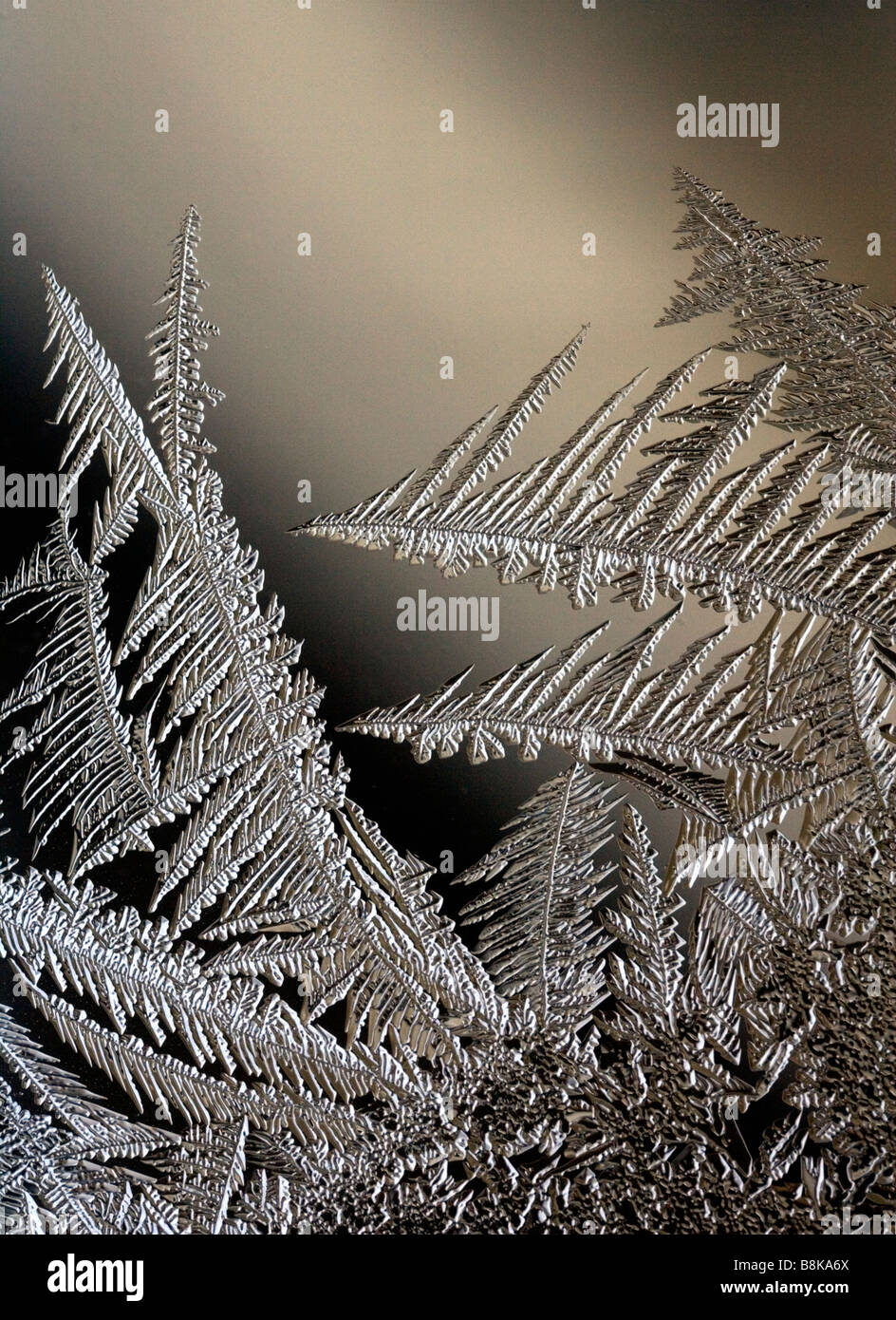 Frost forms on a frigid winter window. - Stock Image