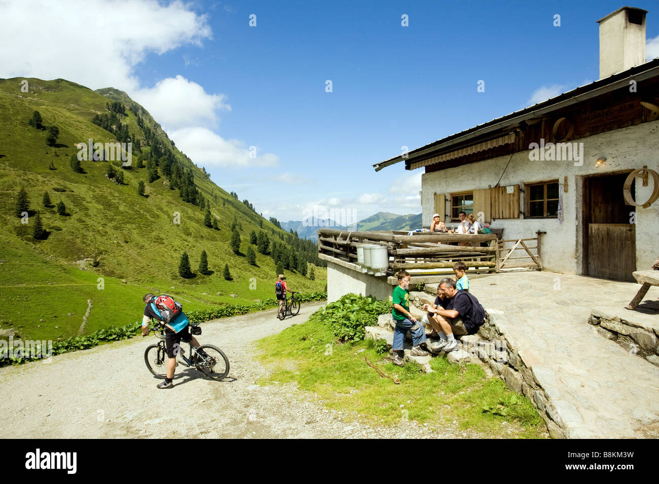 The alp Steinbergalm on 1712m in the near from the mountain Grosser Galtenberg - Stock Image