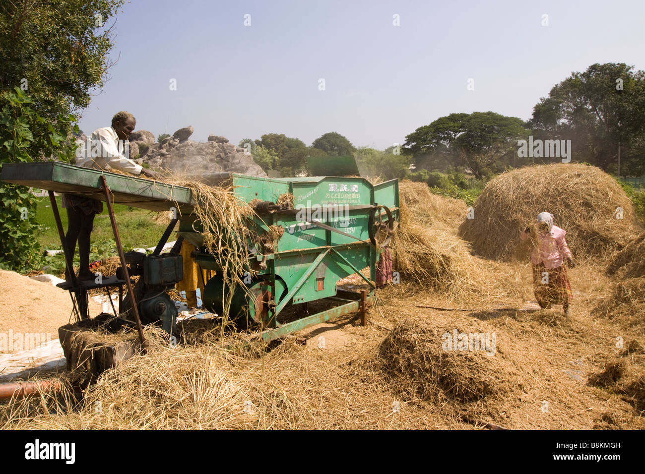 India Tamil Nadu harvest time threshing harvested rice with