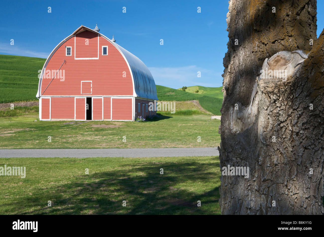 Red barn in rolling farm country of the Palouse area of eastern Washington state - Stock Image