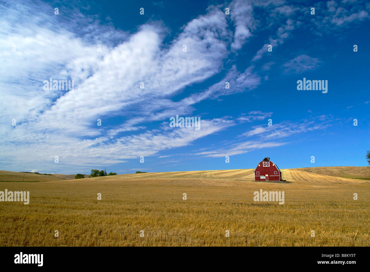 Red barn in the rolling farm country of the Palouse area of eastern Washington state - Stock Image