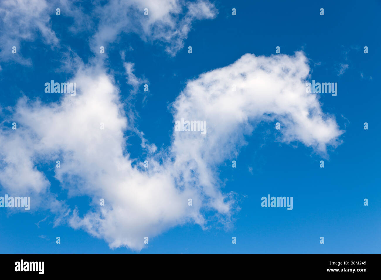 Fluffy white cloud in blue sky - Stock Image