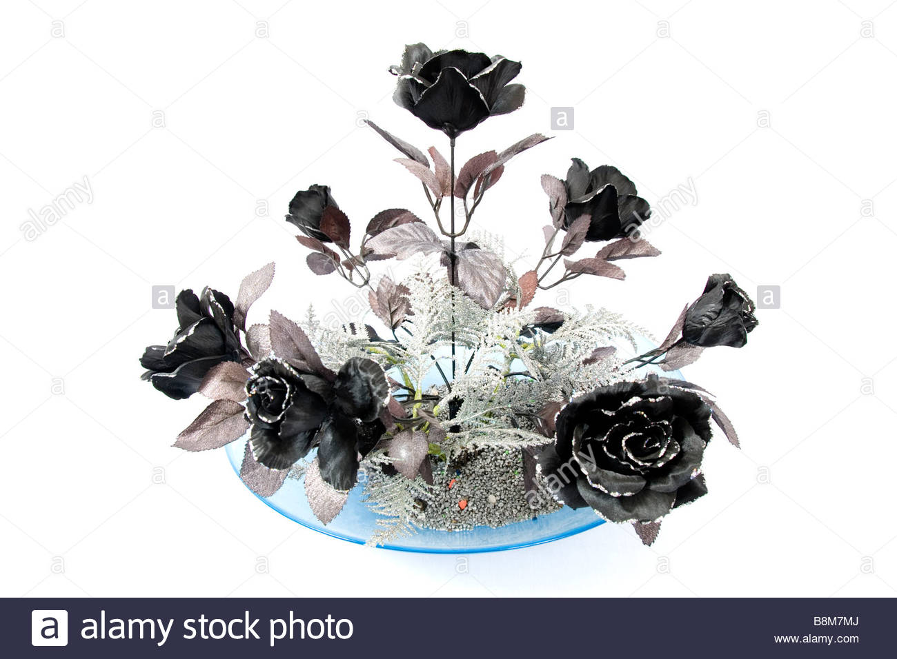 Black And Silver Roses On White Background