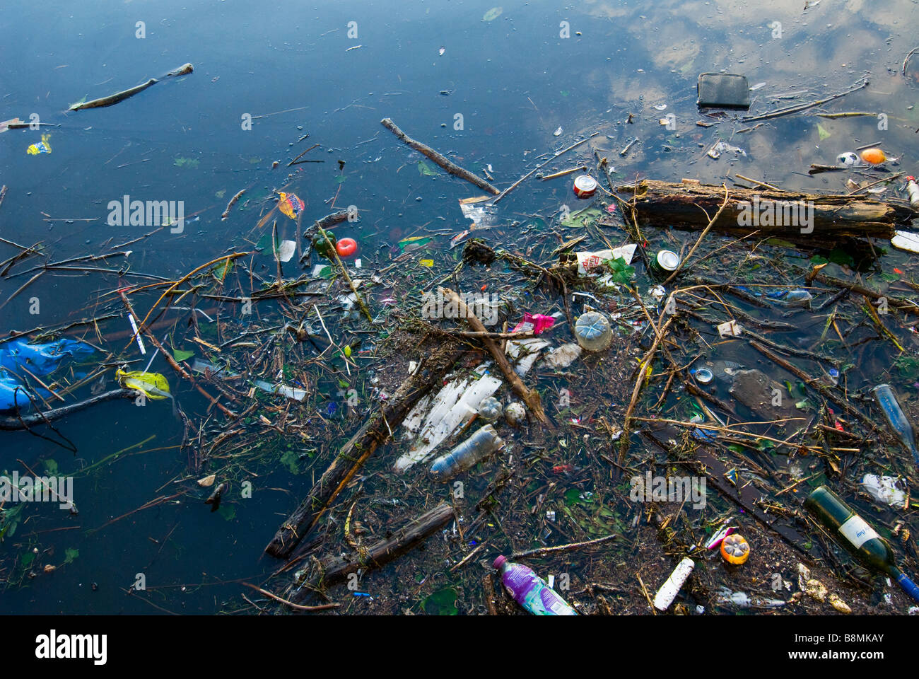 photograph of rubbish floating on water surface - Stock Image