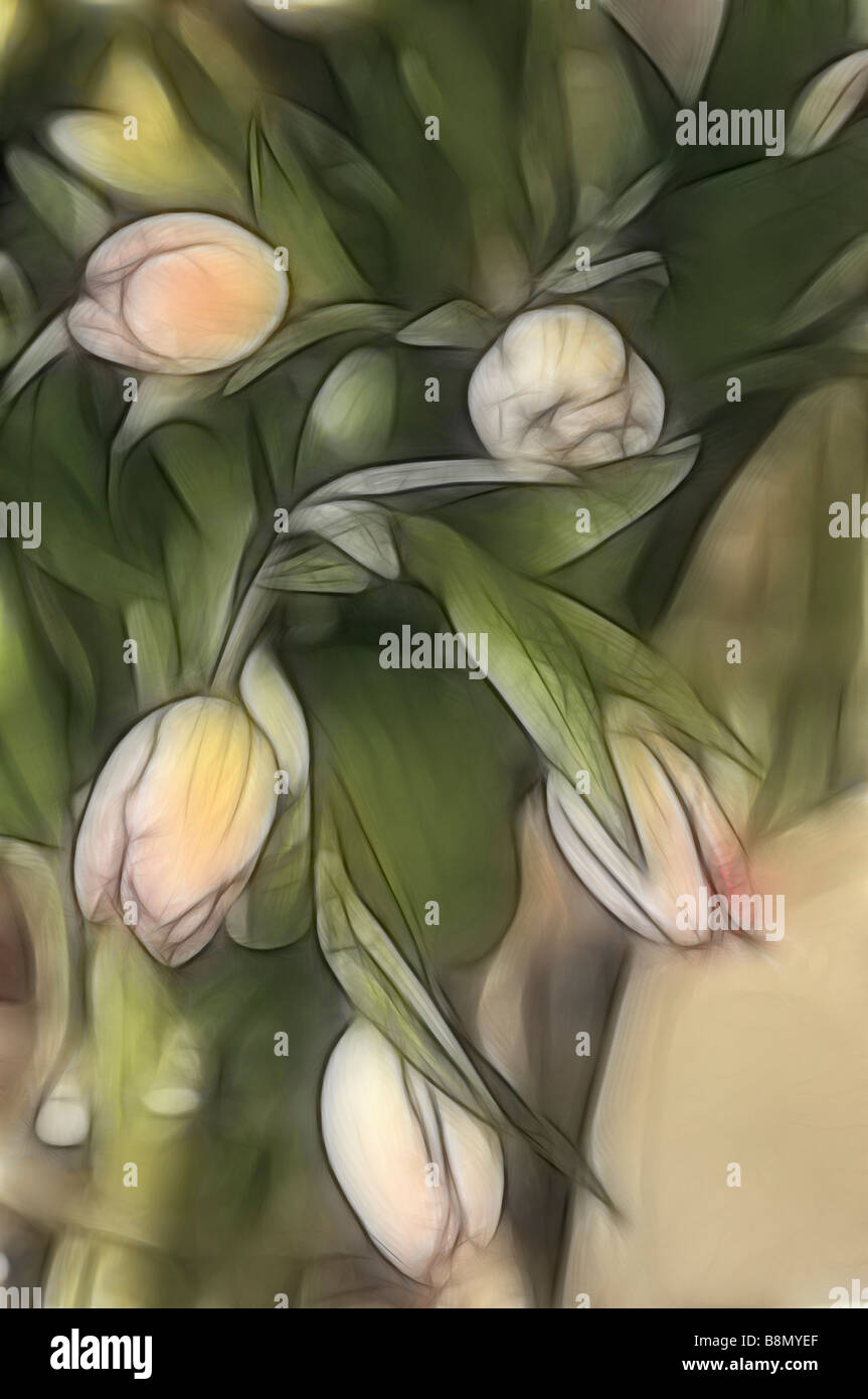 Sketch of Five Pink Tulip Bouquet Surrounded with Green Leaves in a Vase - Stock Image