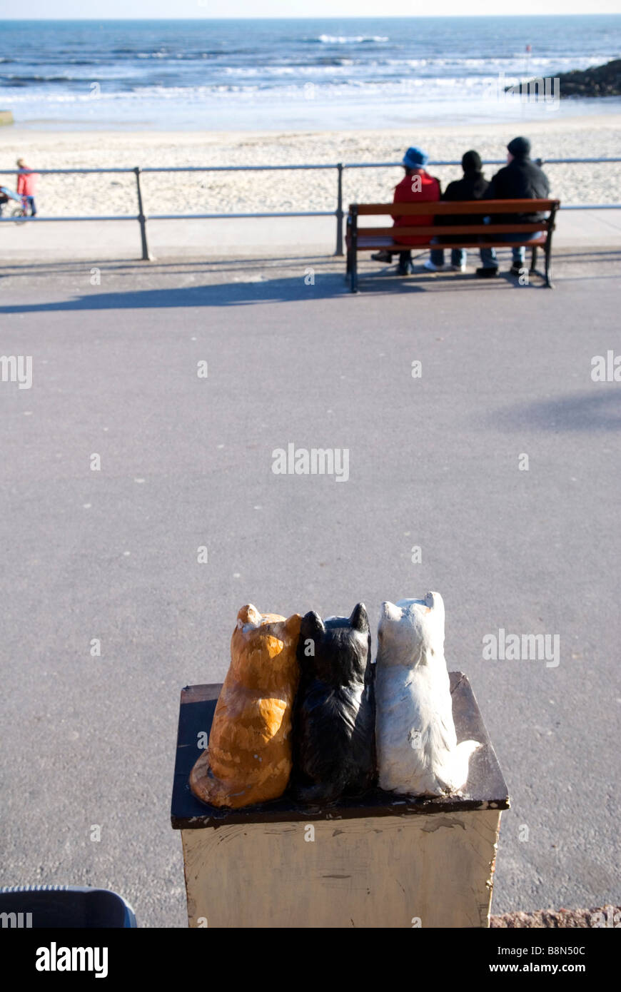 close up of rear view of three ceramic cats on charity box with three people on bench on promenade in background Stock Photo
