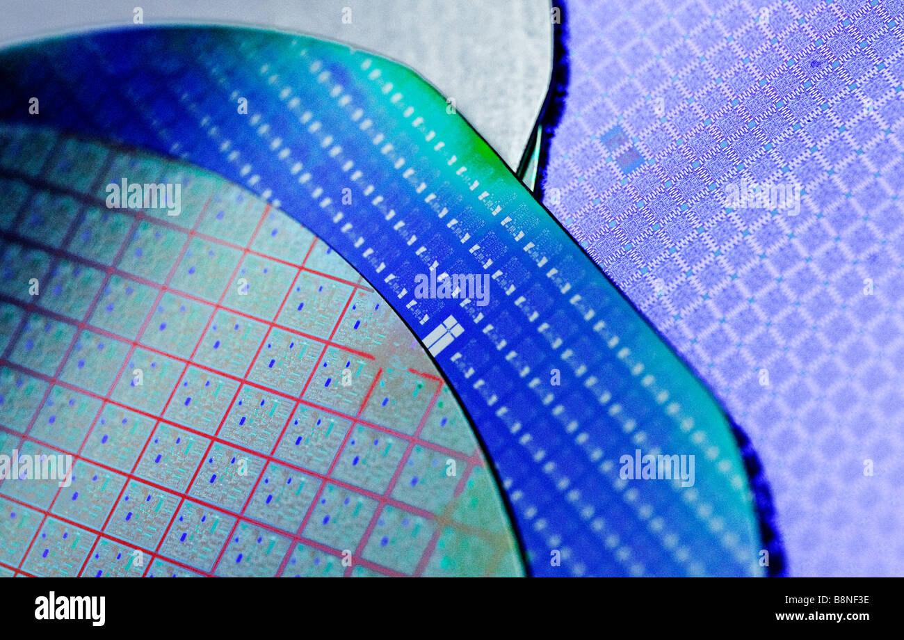 Semiconductor silicon computer wafers containing multiple microchip circuits prior to being cut into individual - Stock Image