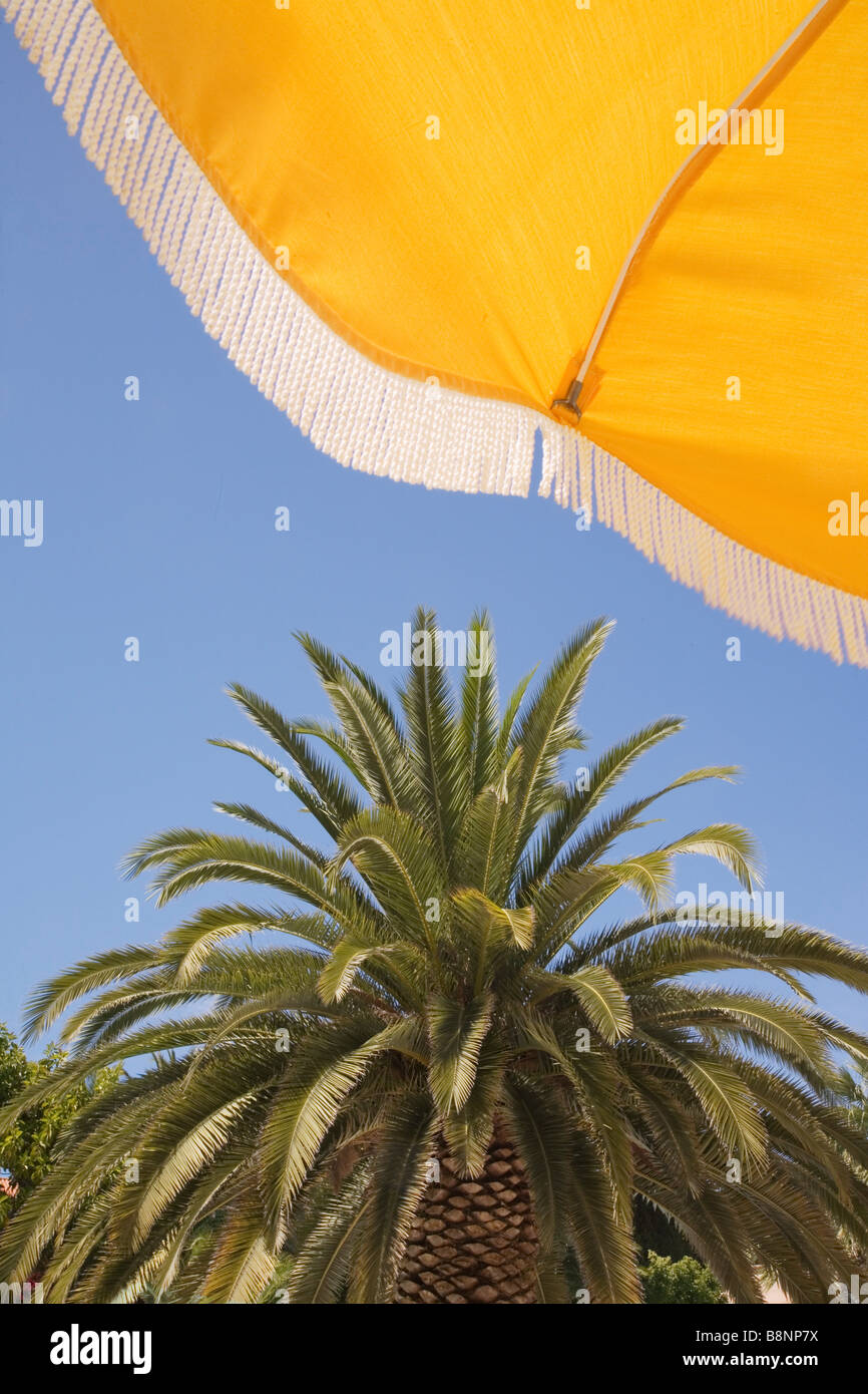 Looking upwards at a yellow beach umbrella with blue sky and palm tree behind. - Stock Image