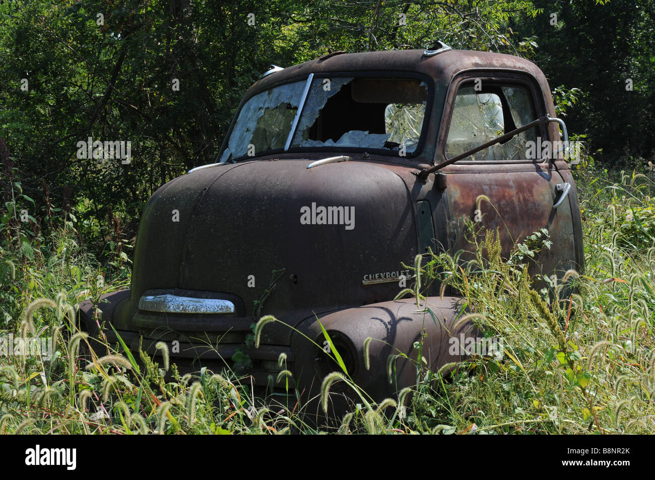 Old stub nose truck Chevrolet USA - Stock Image