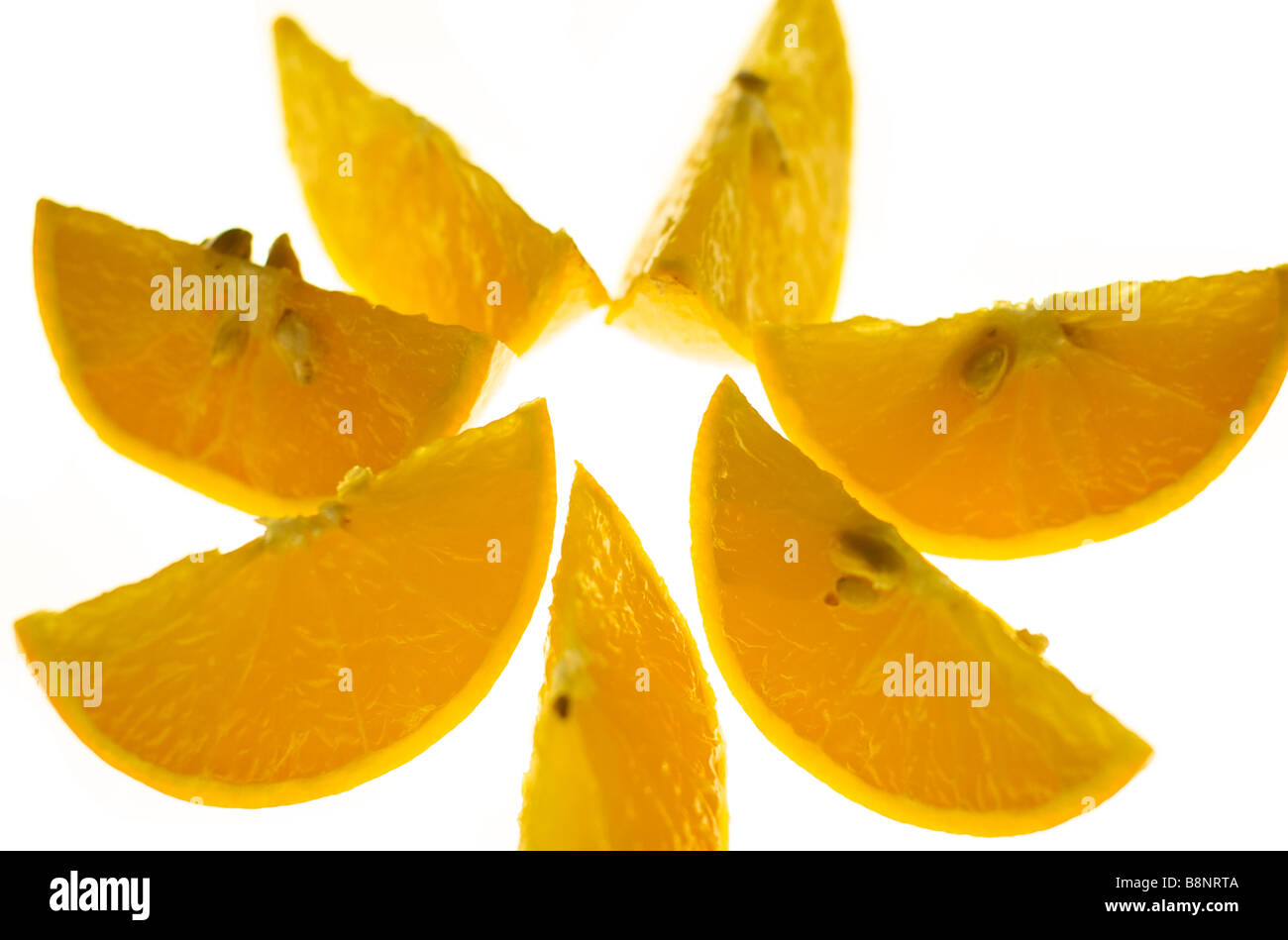 Orange Slices Arranged in a Circular Composition - Stock Image
