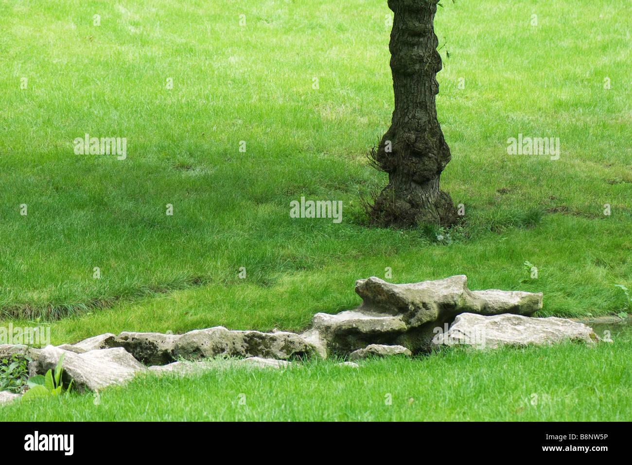 Park scene with rocks, tree trunk - Stock Image