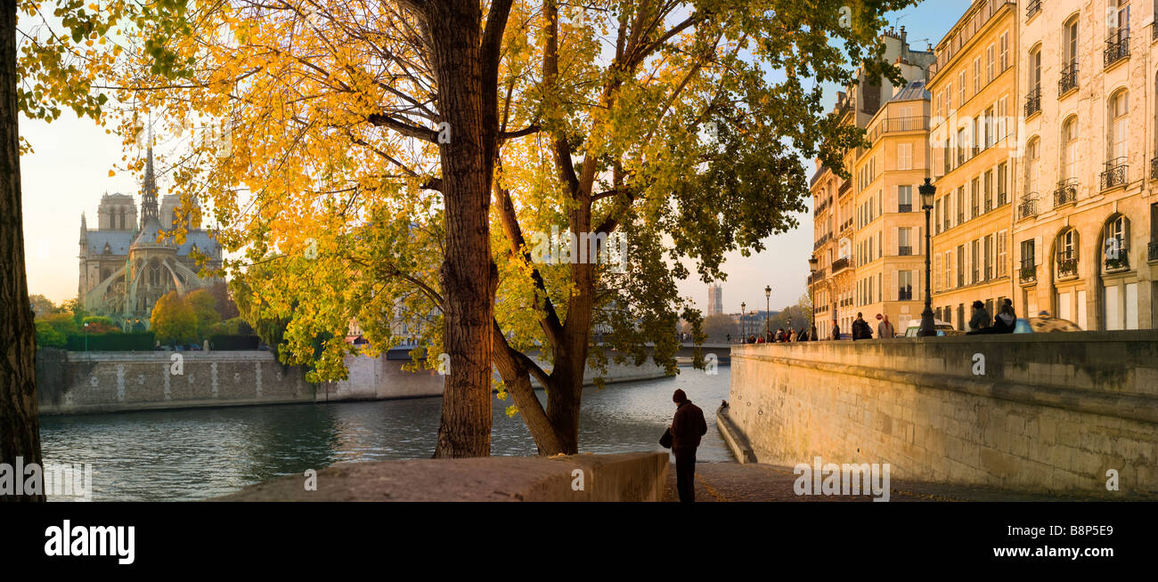 Notre Dame viewed over the river Seine Paris France Stock Photo