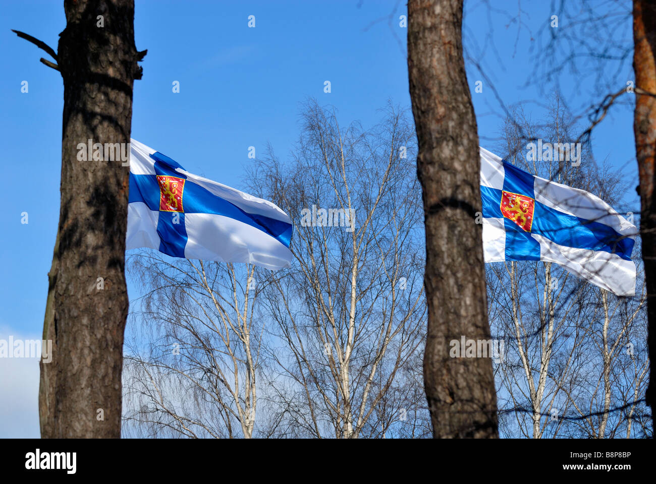 The global economic crisis have hit hard to the Finnish forest industry. The Finnish flags are lowered to 'half - Stock Image