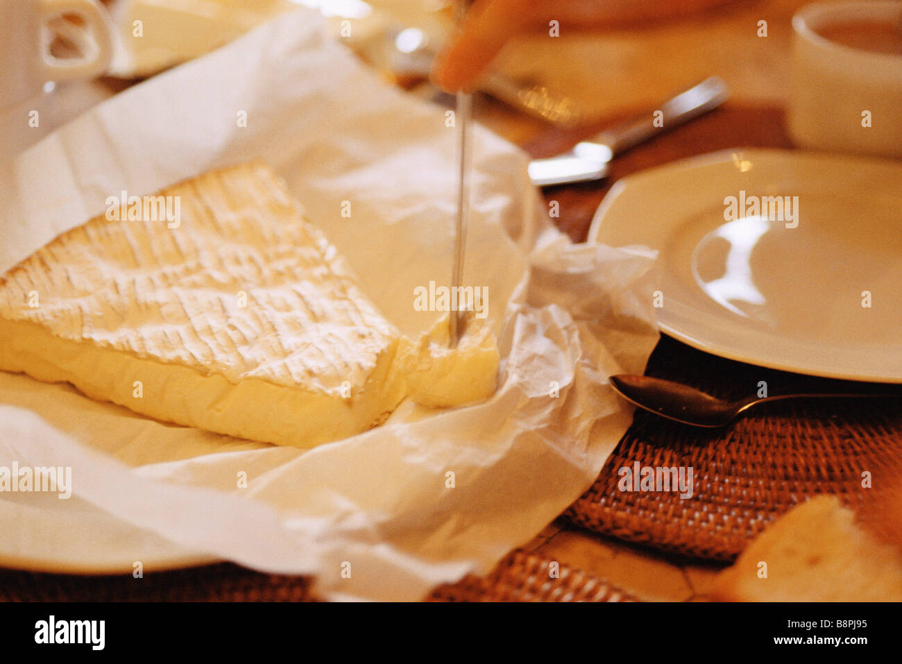 Brie on set table - Stock Image
