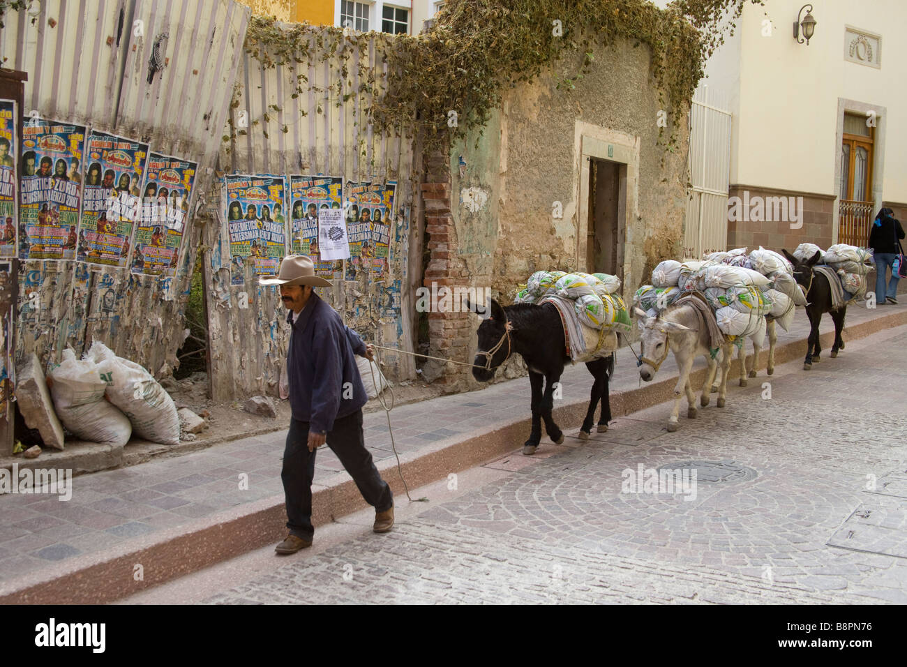 Deliverng Cement by Donkey in Guanajuato, Mexico Stock Photo