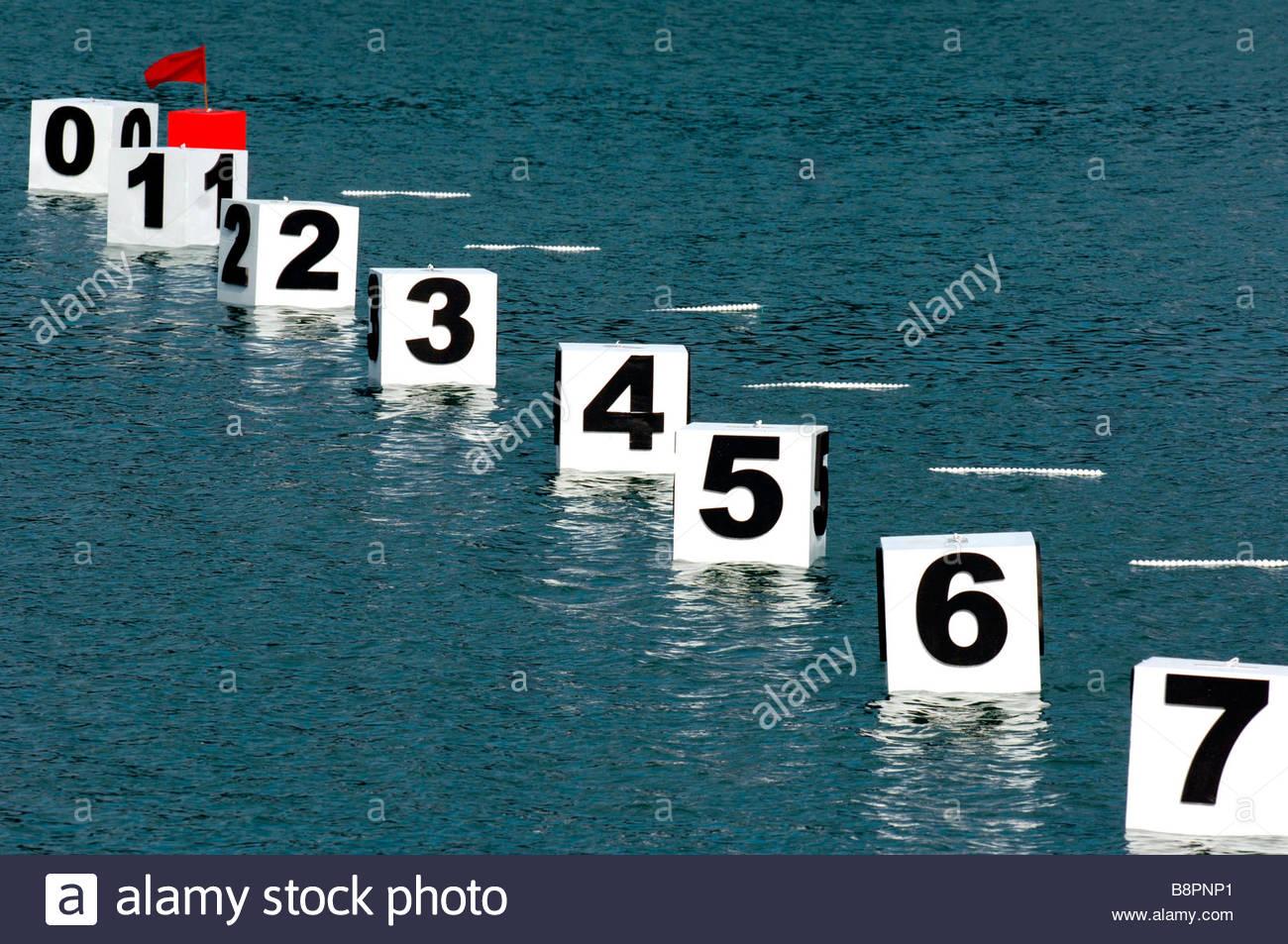 rowing - Stock Image