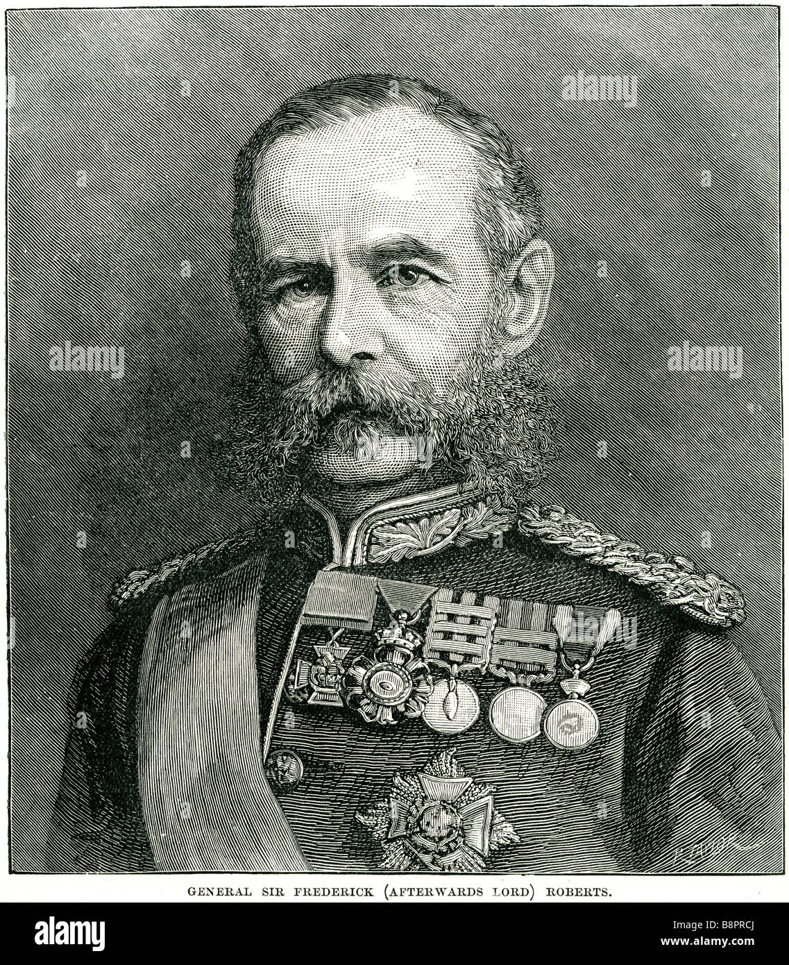 Field Marshal Frederick Sleigh Roberts 1832 1914 Anglo-Irish soldier - Stock Image