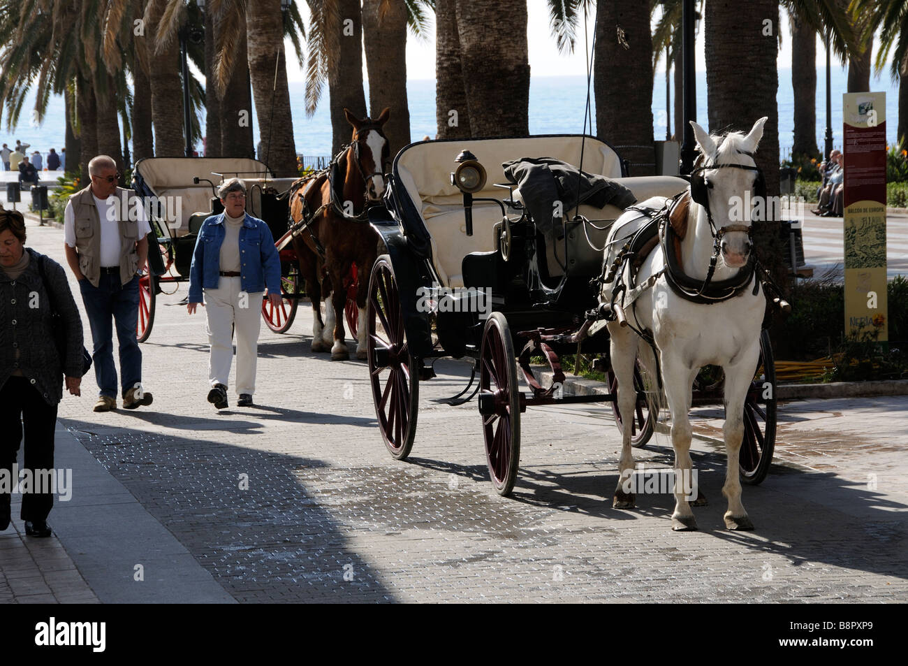 Horse drawn taxi in the town centre of Nerja in southern Spain wait for custom on the roadside - Stock Image