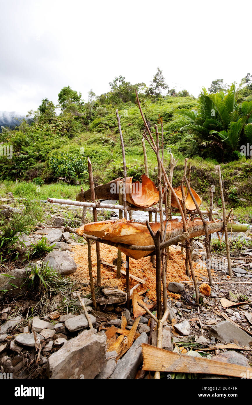 Primative yet usefull tools for making sago a staple food in Papua New Guinea and Indonesia - Stock Image