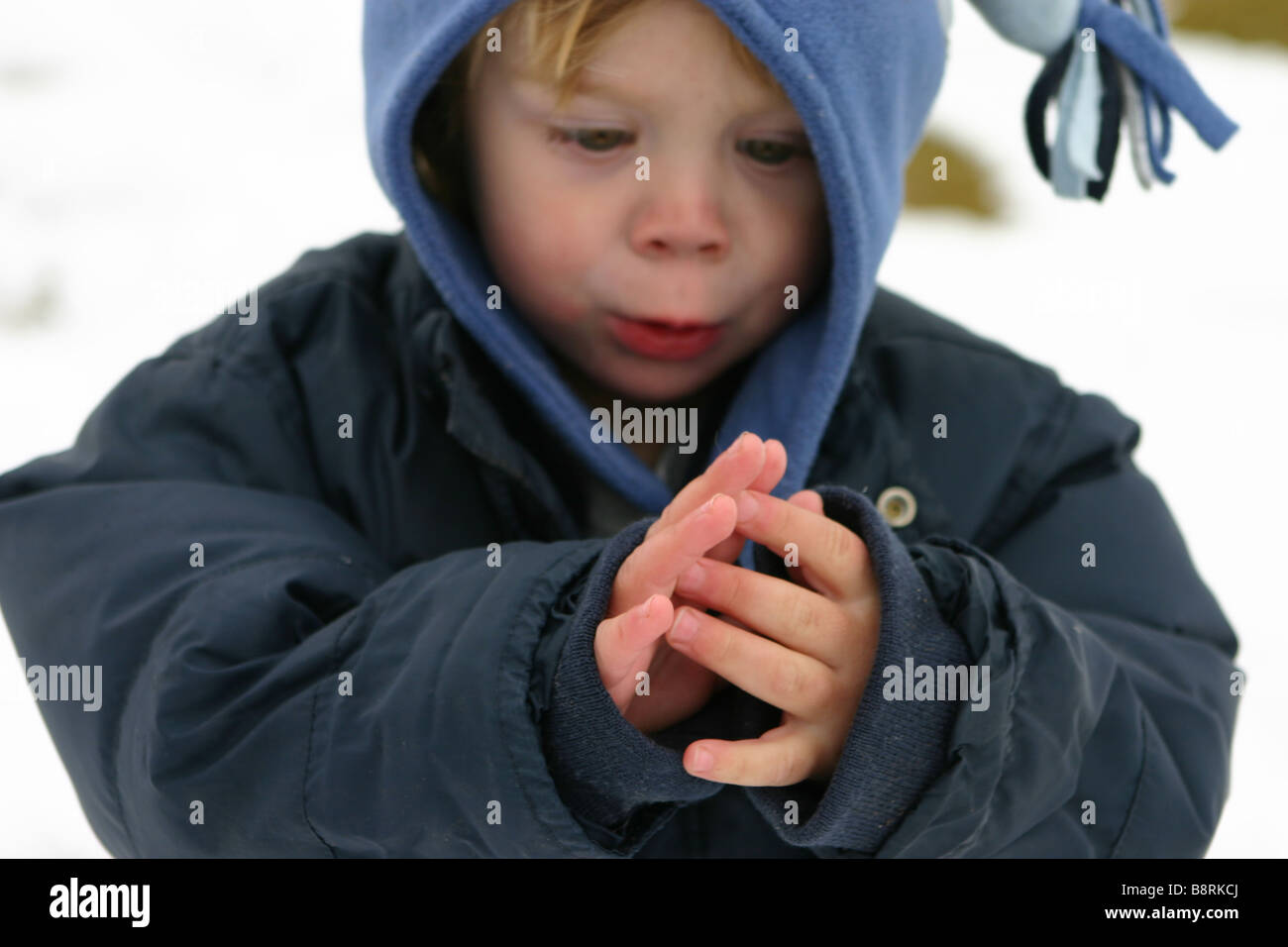 child looking at red fingers on a snowy day - Stock Image