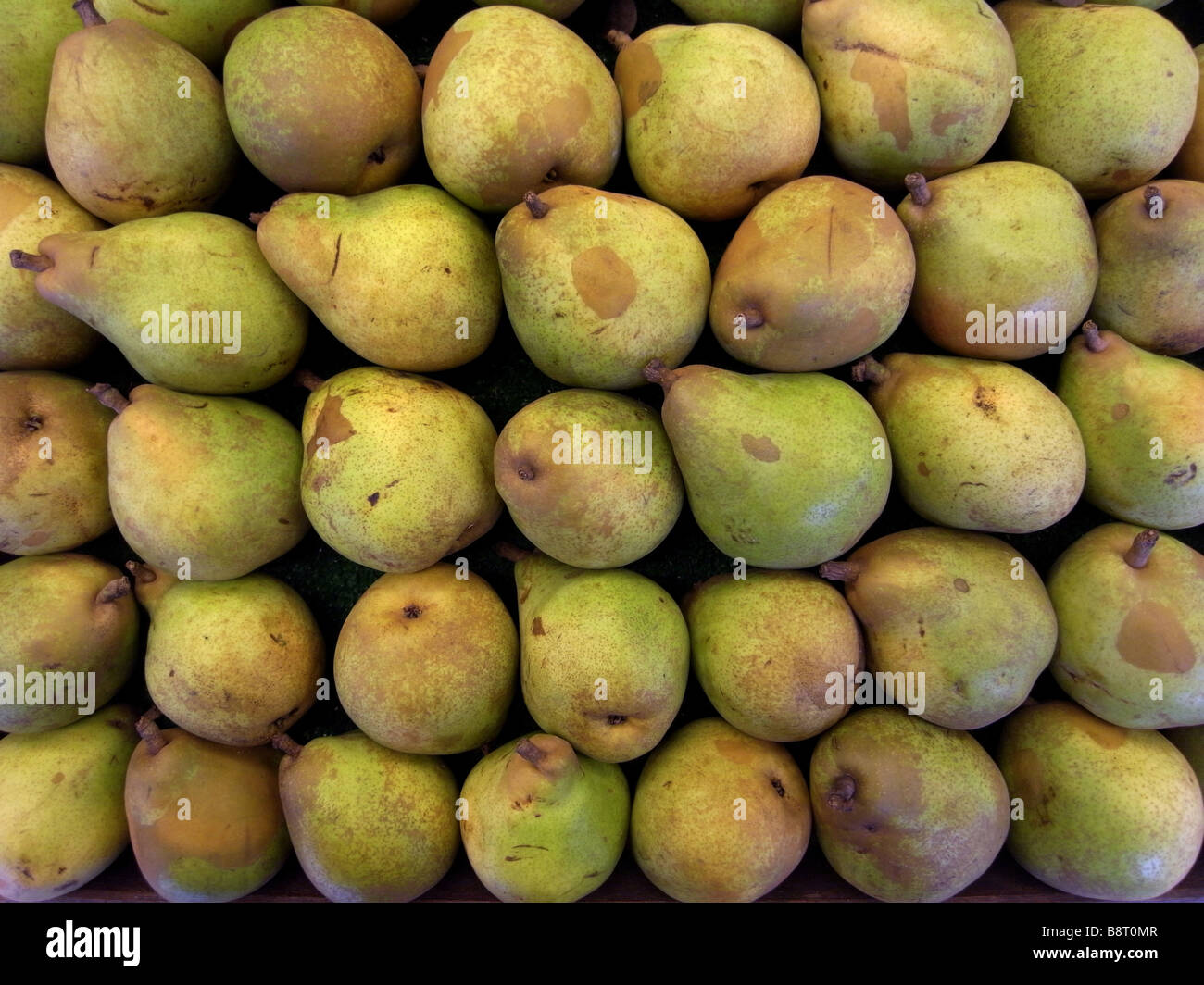 pears on display - Stock Image