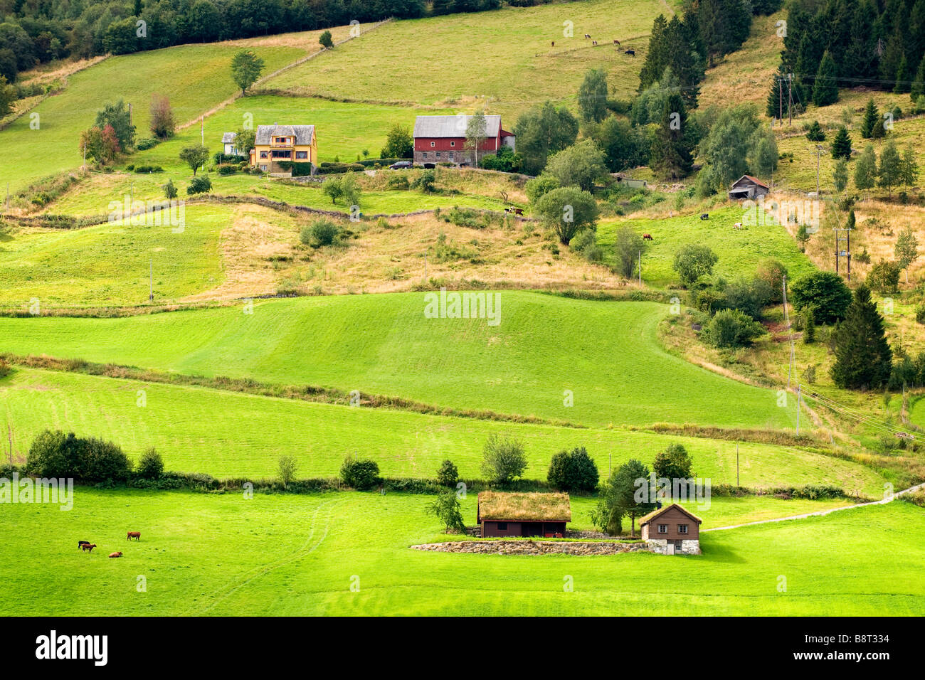 View of hills and farms near Olden, Norway - Stock Image