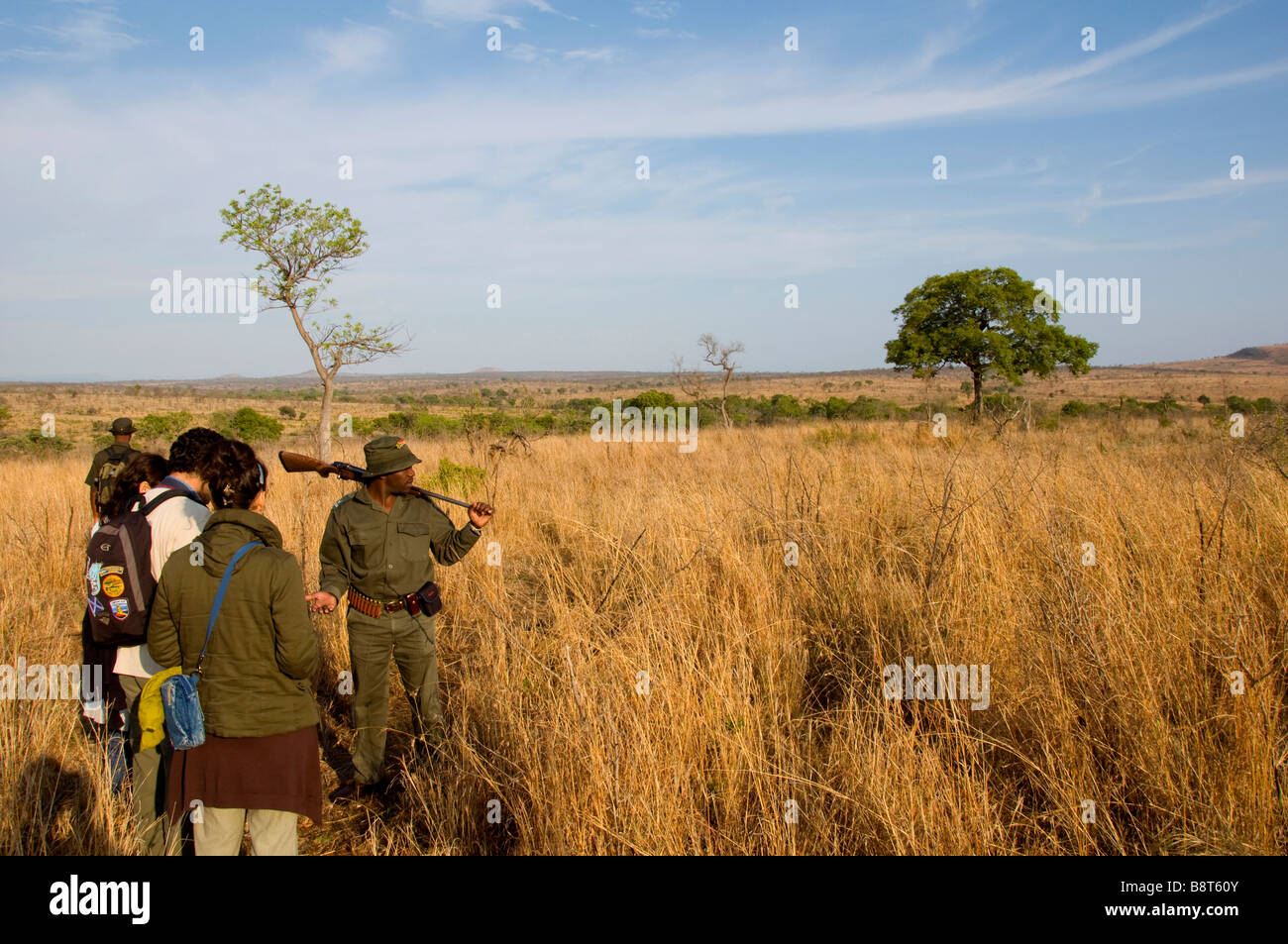Dawn Bush Walk in Kruger National Park South Africa - Stock Image