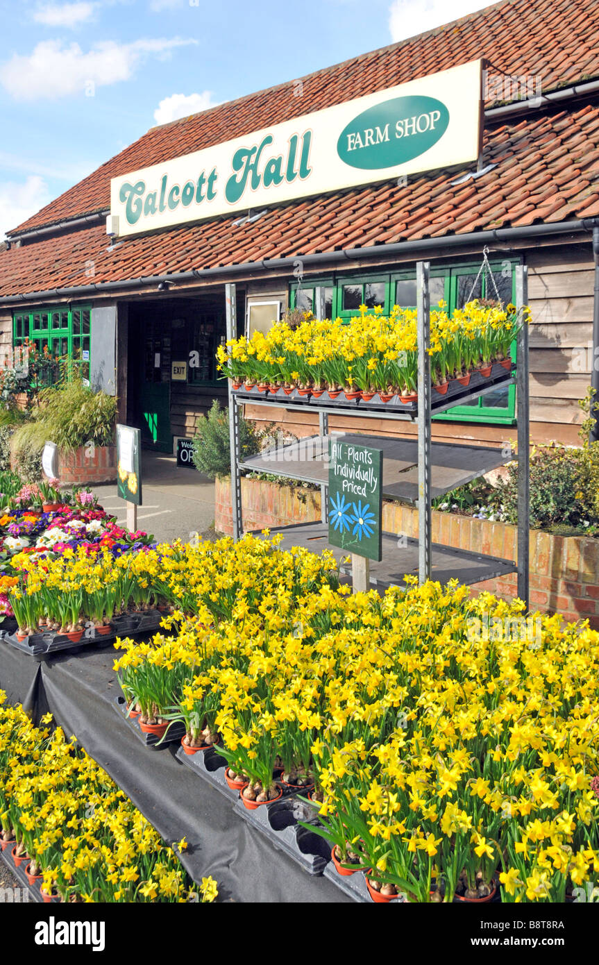 Calcott Hall Farm Shop and selection of garden plants for sale - Stock Image