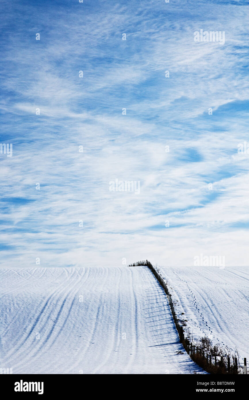 A sunny snowy winter landscape view or scene showing a snow covered field and cirrus cloud formation in a blue sky - Stock Image