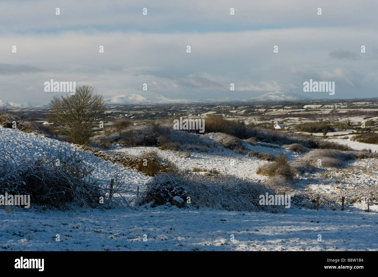 Snow covered fields in the west of Ireland - Stock Image
