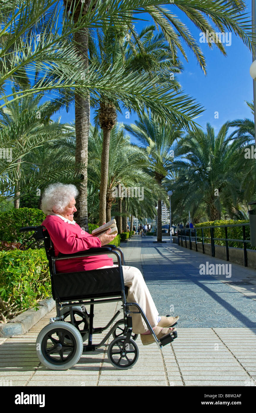 Contented elderly disabled lady sitting in her wheelchair reading a book in sunny holiday vacation lush palm tree - Stock Image