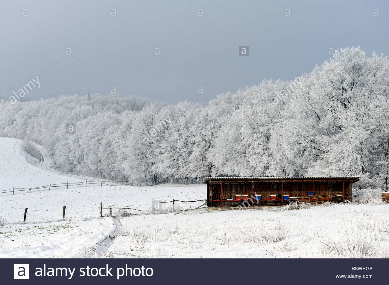 Country Landscape Covered with Snow Yorkshire UK Stock Photo