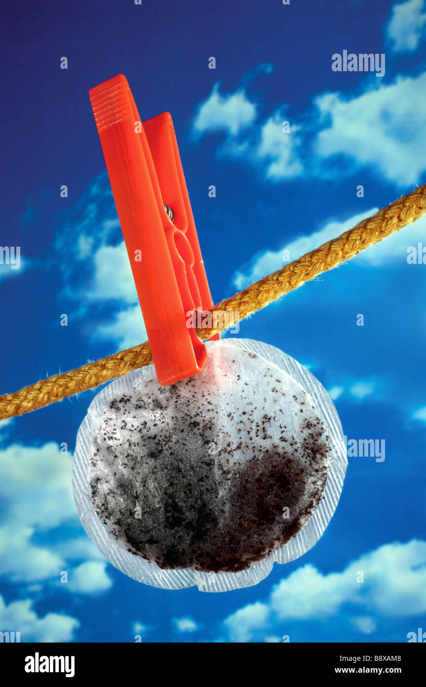 recycling tea bag on washing line reuse reusing to economize economise - Stock Image