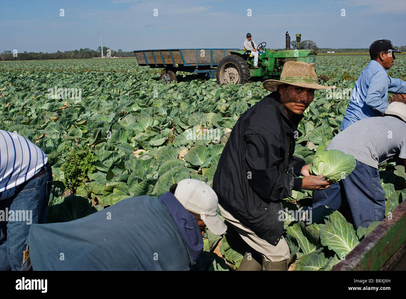 Migrant workers Florida USA - Stock Image