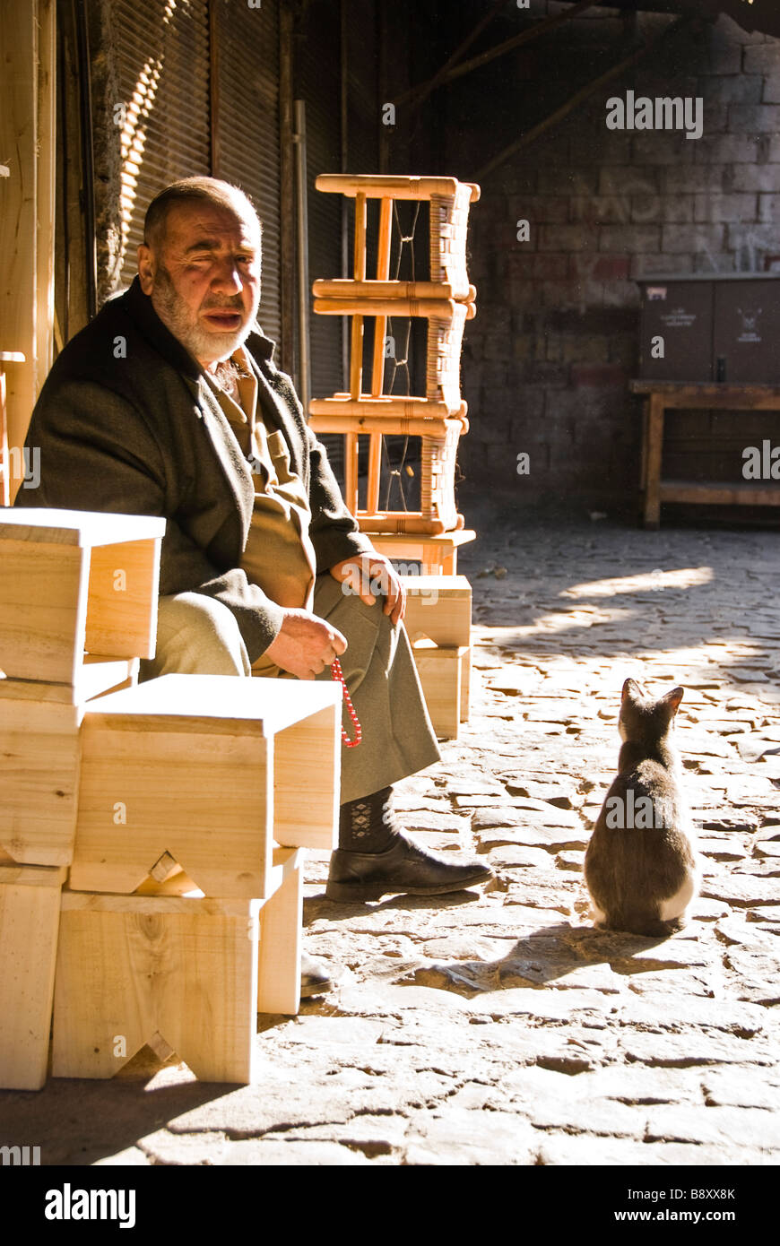 Man and a cat, Diyarbakir, Turkey, Asia - Stock Image