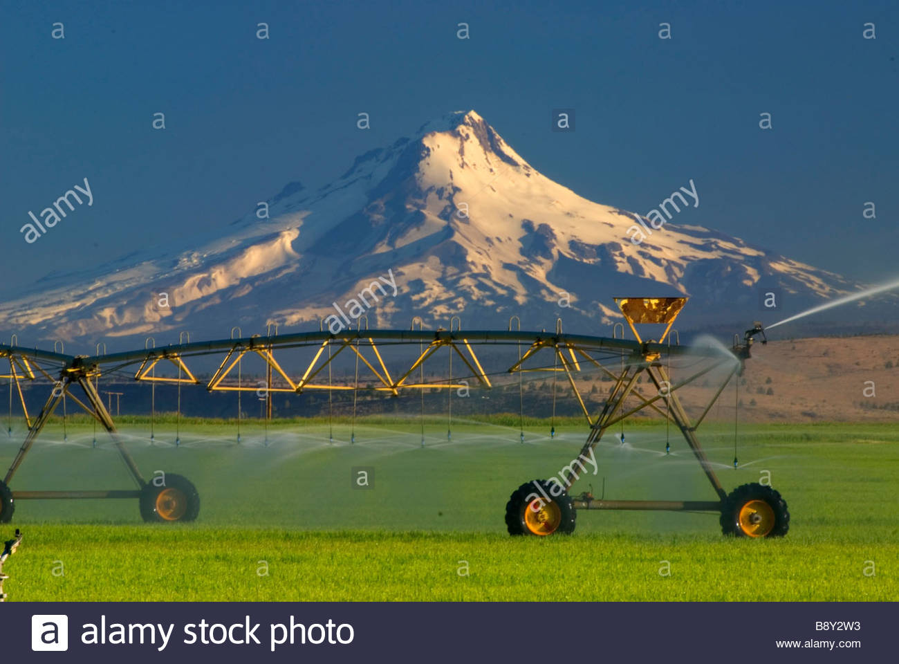 Agricultural sprinkler in a field with a mountain in the background, Mt Hood, Jefferson County, Oregon, USA - Stock Image