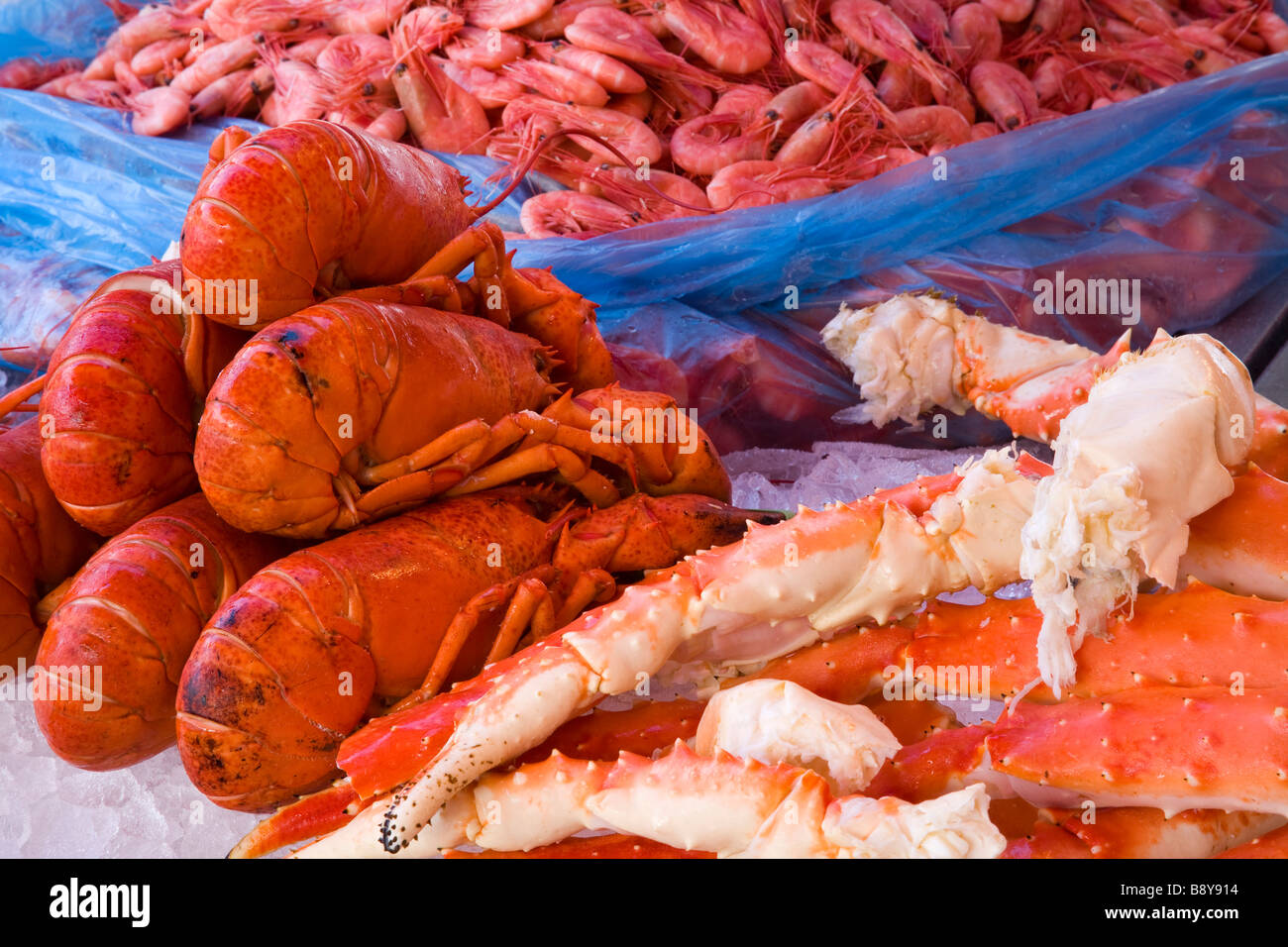Seafood at a market stall, Torget Fish Market, Bergen, Hordaland County, Norway - Stock Image