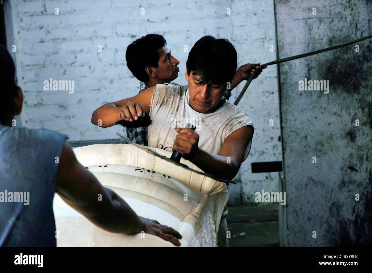 Man stamping, bail of cotton, behind him another man is pulling a rope - Stock Image
