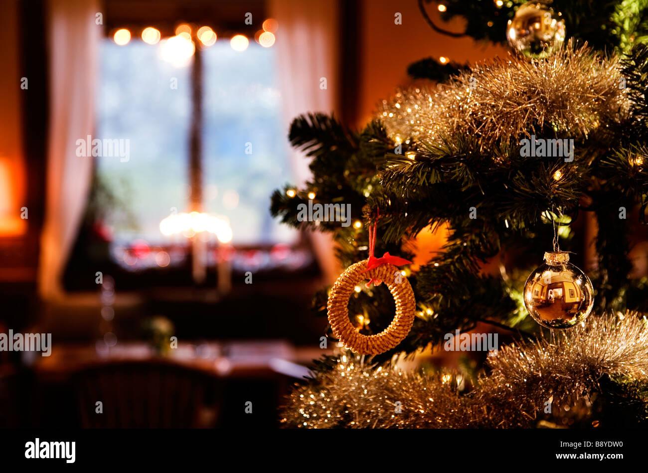 A Christmas tree. - Stock Image