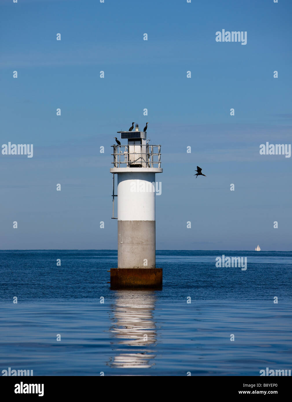 A lighthouse and a cormorant Stockholm archipelago Sweden. - Stock Image