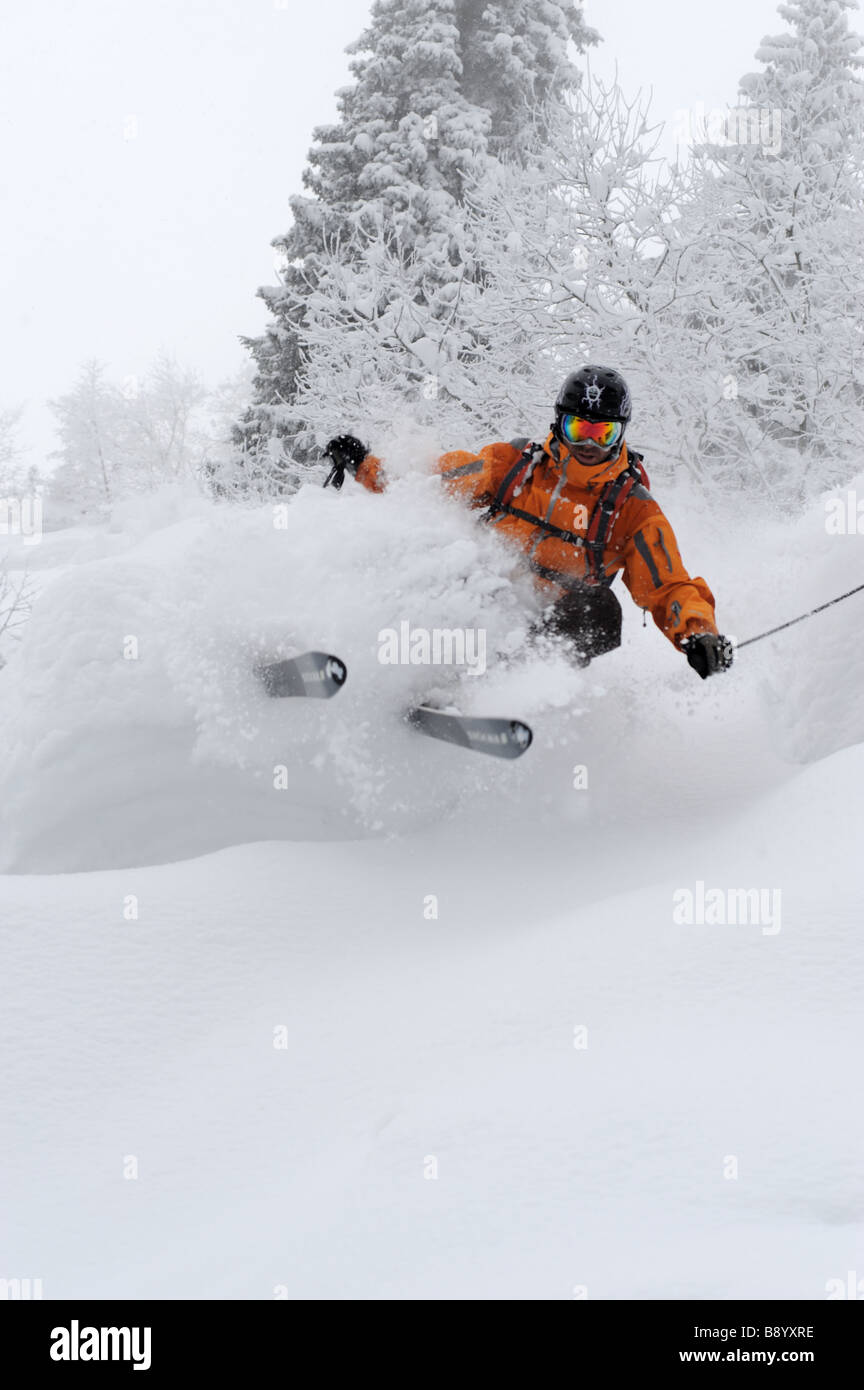 Freerider skies in deep powder during snow fall - Stock Image