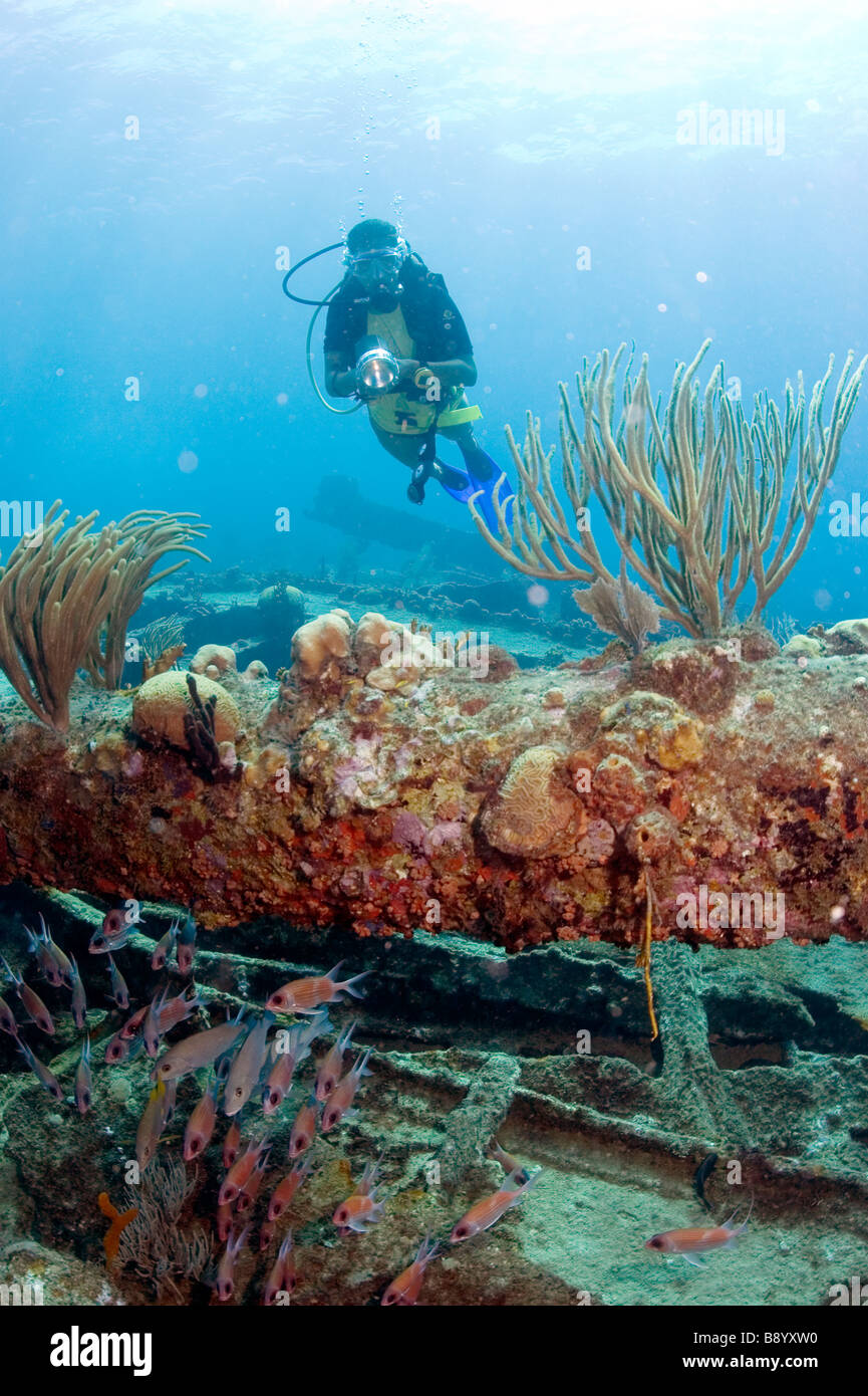 Scuba diving at the wreckage of the RMS Rhone in the waters of the Caribbean isle Salt Island in the British Virgin - Stock Image