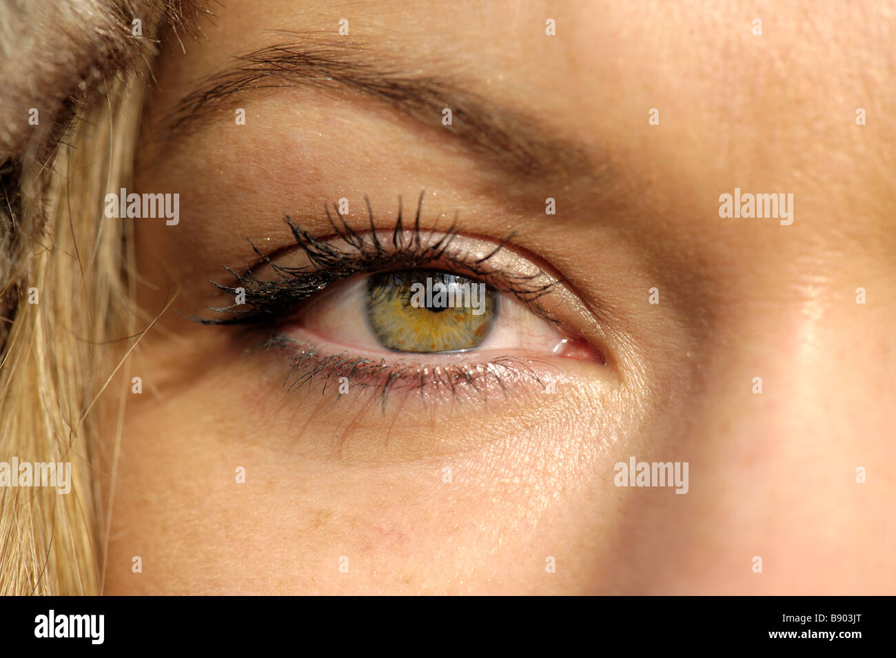 Eyes of a beautiful woman - Stock Image