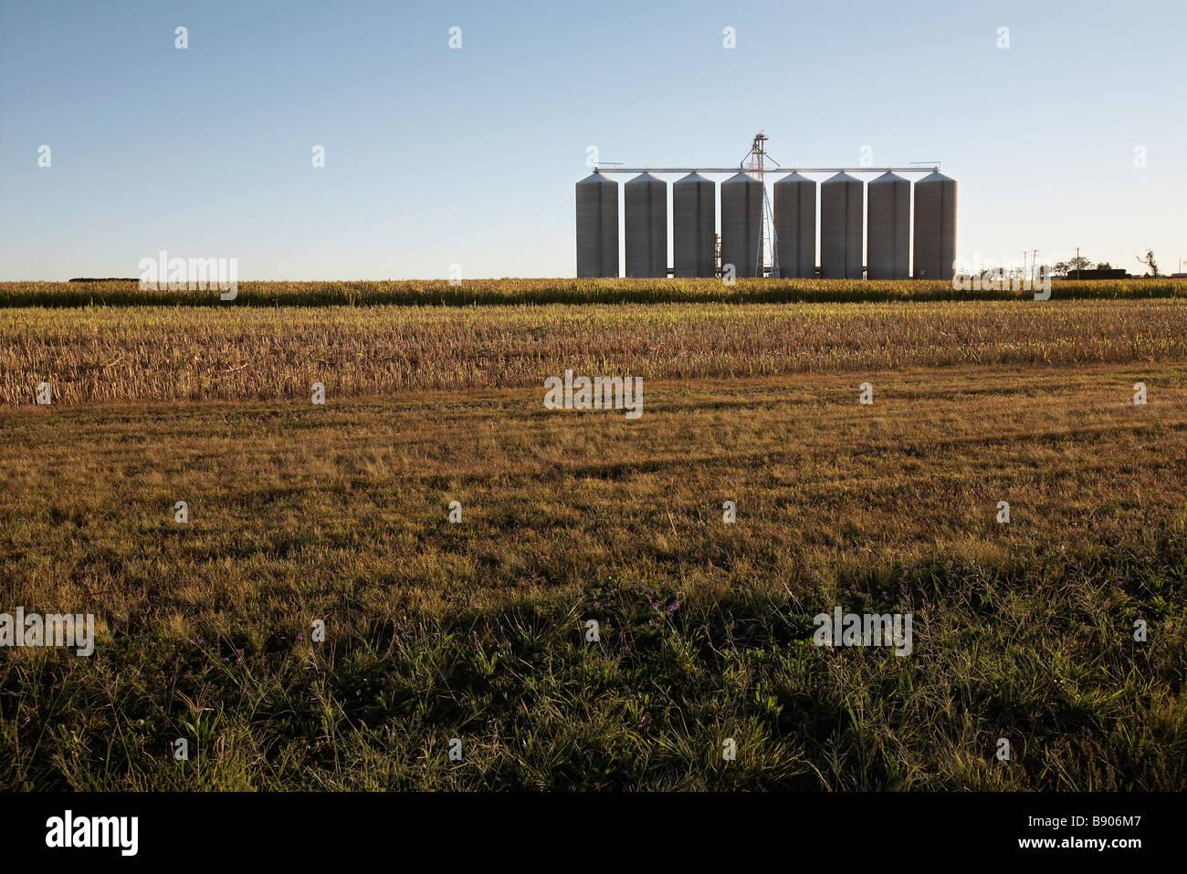 Silos - Stock Image